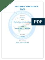 UNIVERSIDAD_ABIERTA_PARA_ADULTOS_UAPA_Pr.docx