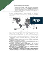 7.2. Posicionamiento Internacional y Cultura Corporativa (1)