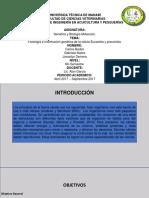 proyecto celulas.pptx