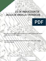 Motores de Induccion de Jaula de Ardilla Trifasicos