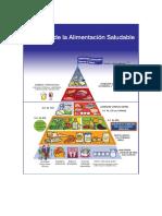 Piramide Alimentacion Saludable SENC