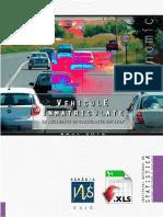 Vehicule Inmatriculate Si Accidente de Circulatie Rutiera Anul 2015