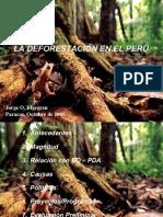 Deforestacion en Perù