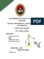 Universidad Nacional de San Agustin Ensayos