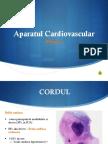 ap cardiovascular.pptx