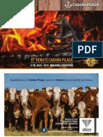 Catálogo de venta Pilagá