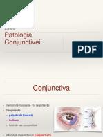 Conjunctiva Ppt