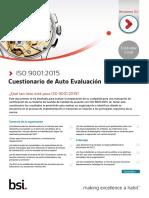 ISO 9001 Self Assessment.pdf