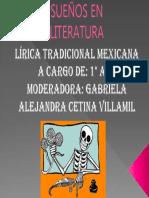 El Sueño de La Literatura