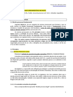 JPL - Normas Processuais Fundamentais