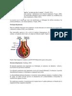 ASFIXIAS_MECANICAS.pdf