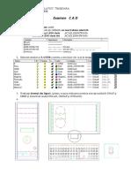 Desen CAD 2
