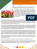 crisis_tulipanes.pdf