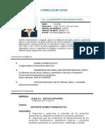 Curriculum Vitae LUZ