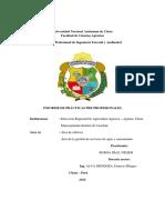 INFORME FINAL PARA IMPRIMIR PRACTICAS (1).docx