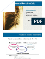 RESP 2. Mecanica Respiratória e Volumes e Capacidades