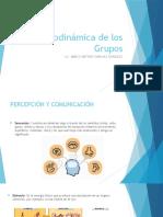 Psicodinámica de los Grupos 160618.pptx