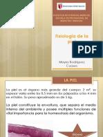 Fisiología de la piel.pptx