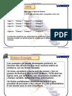 AWK_2.pdf