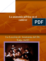 Anatomiadelsuelopelvico.ppt