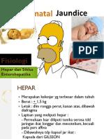 bbdm-2-3-skenario-1-fisiologi