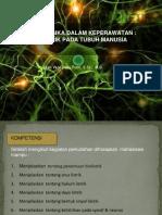 biolistrik pada tubuh manusia.pdf