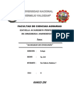 Yaritza Ruiz Calderon