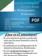 Amoniaco,Toxicologia,Tp Final