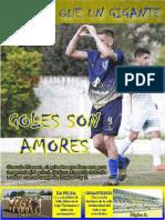 Villa Mitre Revista Digital