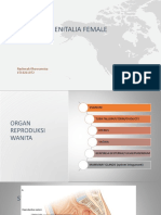 Anatomy Genitalia Female