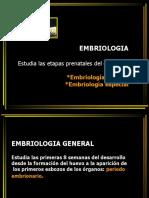 Embriología_tejidos-_histogénesis