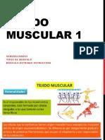 Histo10 - Tejido Muscular 01