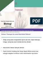"Teori Fisiologi Hewan ""Animal Reproduction"" by Bu Indri Garnasih"