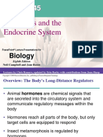 "Teori Fisiologi Hewan ""Hormones and the Endocrine System"" by Bu Indri Garnasih"