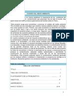 Estructura Del Informe Proyectos Escolares(Cuidado Del Medio Ambien Te)