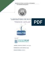LABORATORIO N°4 - Presion Capilar