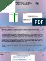 LEVANTAMIENTO DE CARGAS.IND-3307.pptx