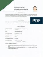 MODELO CURRICULUN.pdf