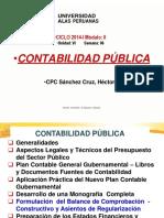 236376434 Contabilidad Publica Semana 06 OK Pptx