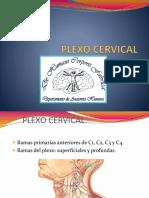 plexocervical-150420174532-conversion-gate02.pdf