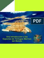 Tortugas Marinas.pdf