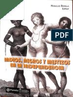 HunefeldtC-EsclavitudPercepcionesRaciales