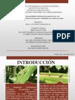 coloquio1 (2).pptx