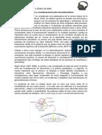 Tema 4 Introducción Neurociencia Educativa y Consideraciones Para Neuroeducadores