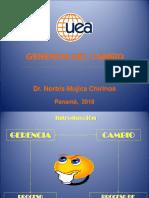 Gerencia Del Cambio