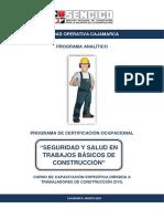 M. Programa Analítico Del Curso Seguridad y Salud