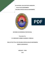 Informe de Experiencia Laboral Mercedes Carmen Guerrero Carbajal