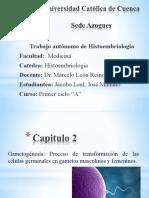 Trabajo Autonomo de Histoembriologia.