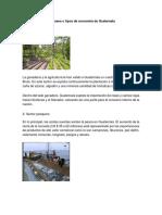 10 Clases o Tipos de Economía de Guatemala