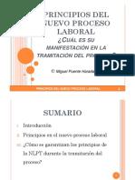PRINCIPIOS_DEL_NUEVO_PROCESO_LABORAL.pdf
